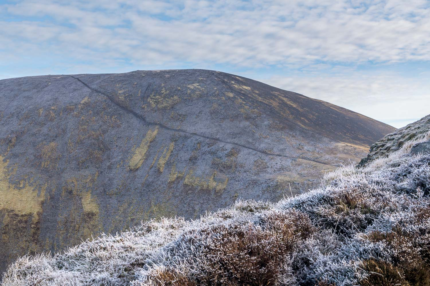 The path from Carl Side to Skiddaw
