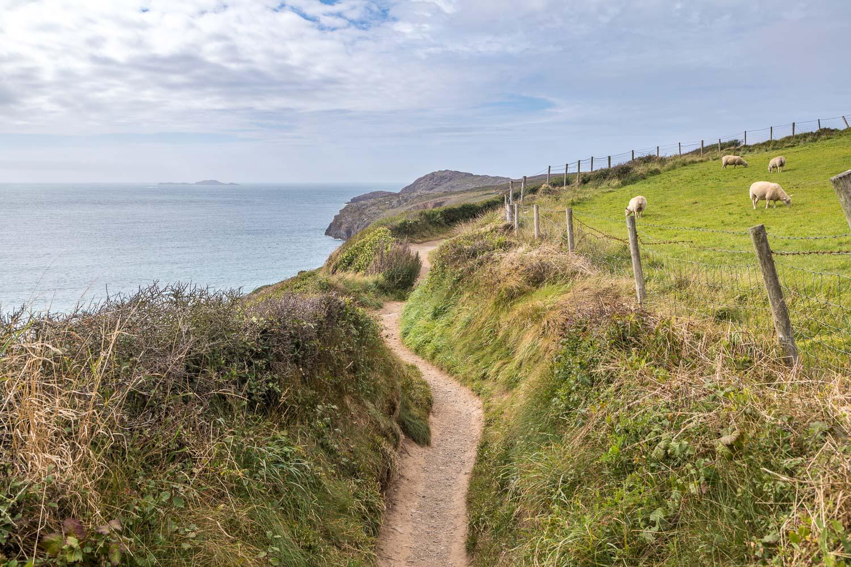 St David's Head walk