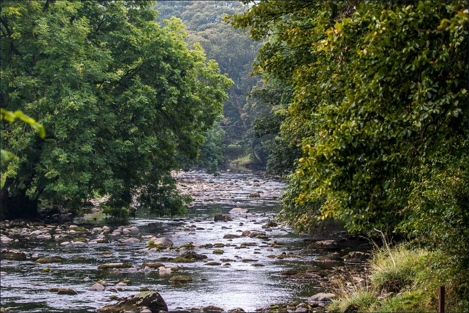 Stainforth walk, River Ribble