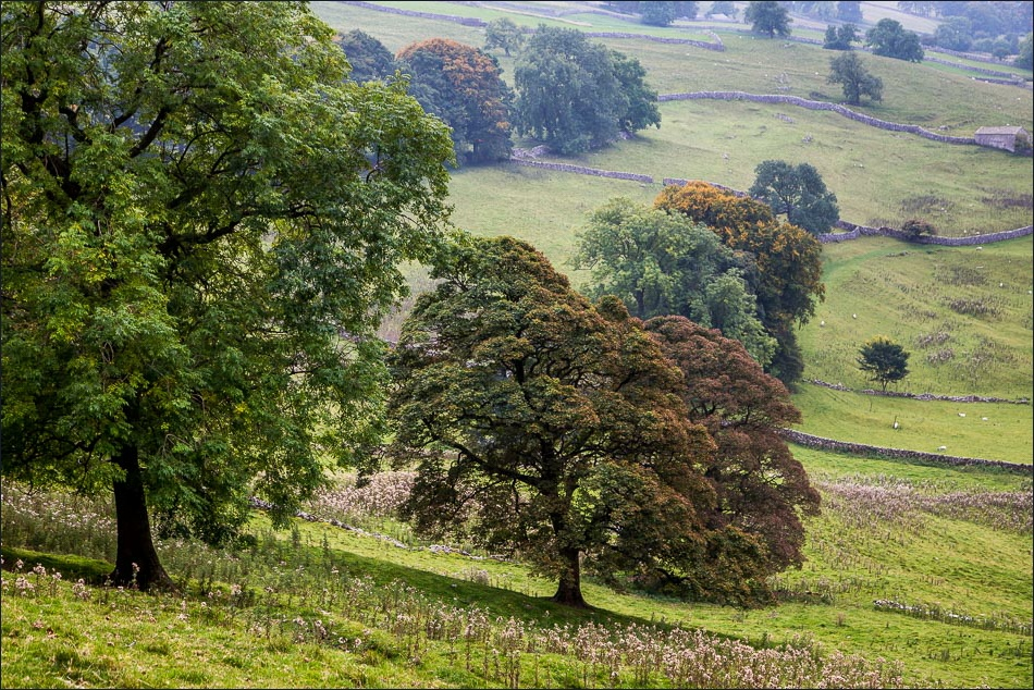 Stainforth walk, limestone country