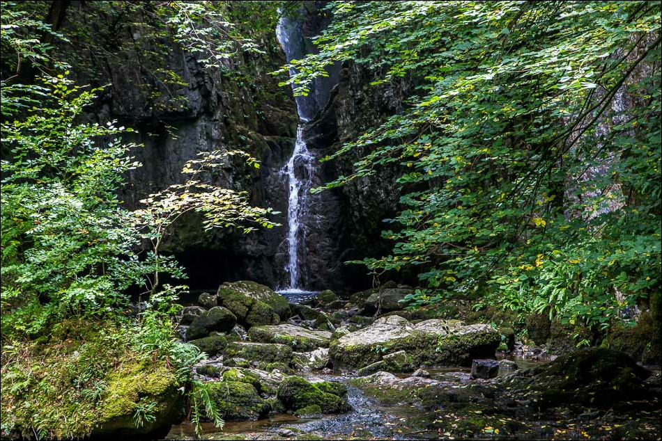 Catrigg Force