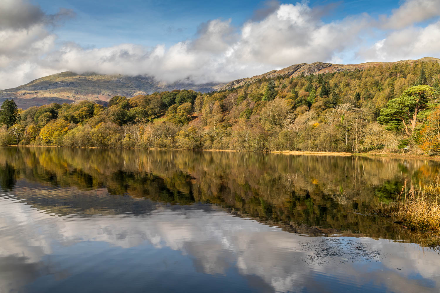Head of Coniston Water