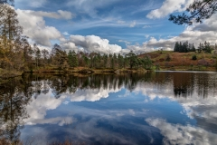 Tarn Hows reflections