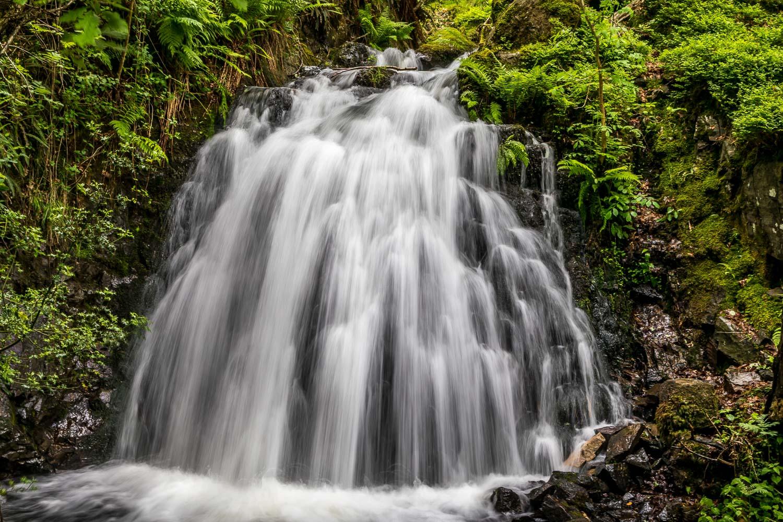 Tarn Hows walk, Tom Gill waterfall