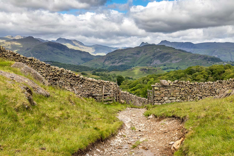 Tarn Hows walk, high Arnside