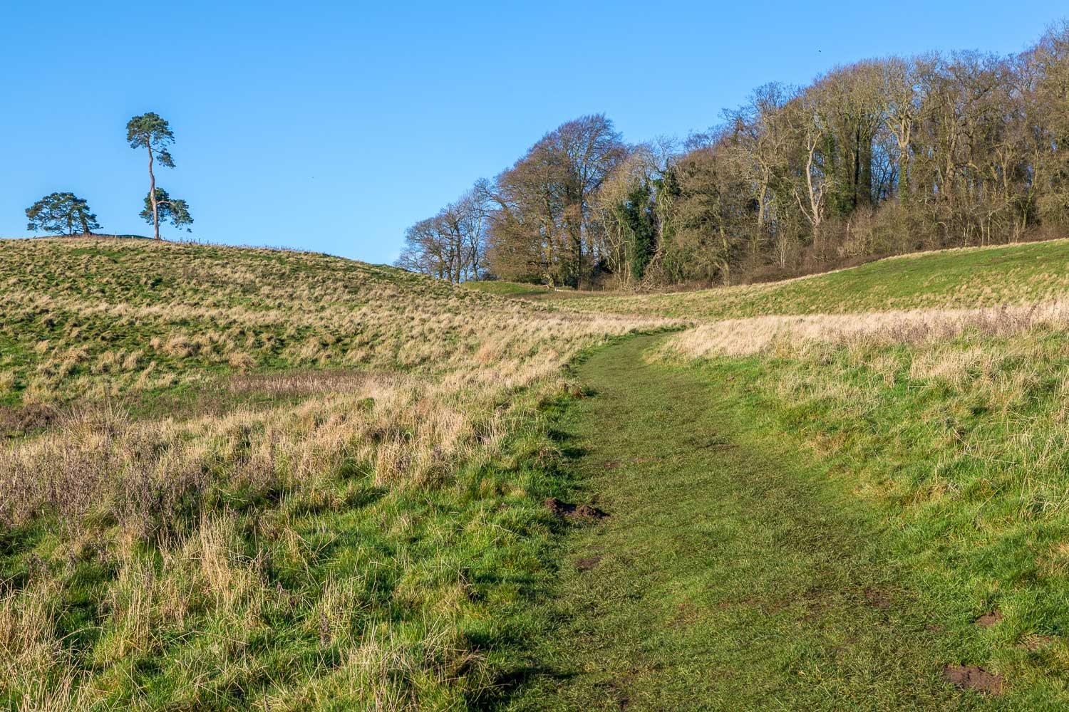 Tealby walk, Viking Way