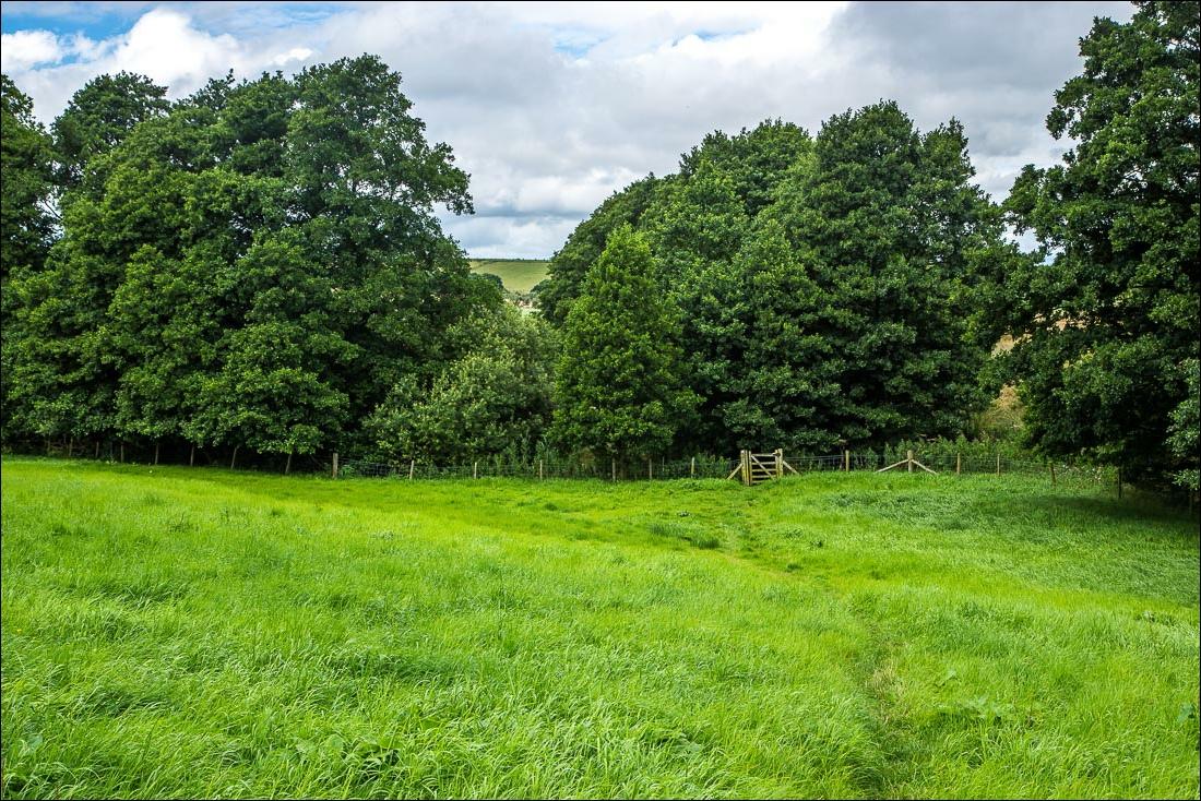Terrington walk, Wath Beck