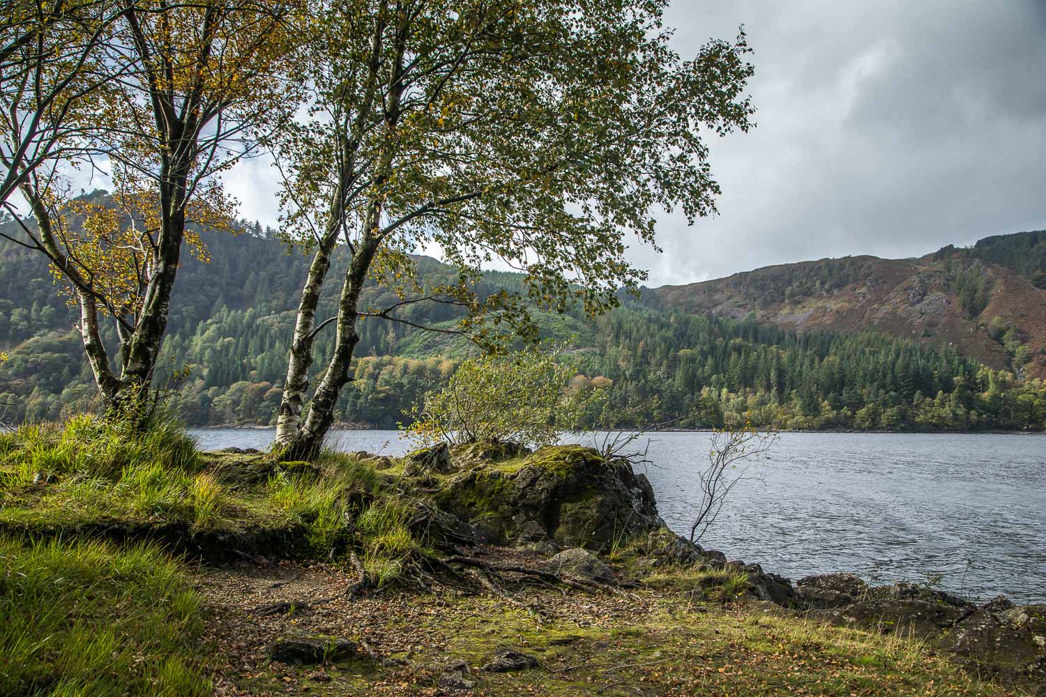Thirlmere walk