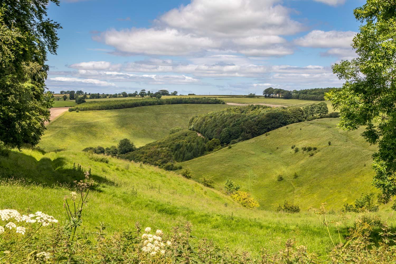 Thixendale walk, Painsthorpe Dale