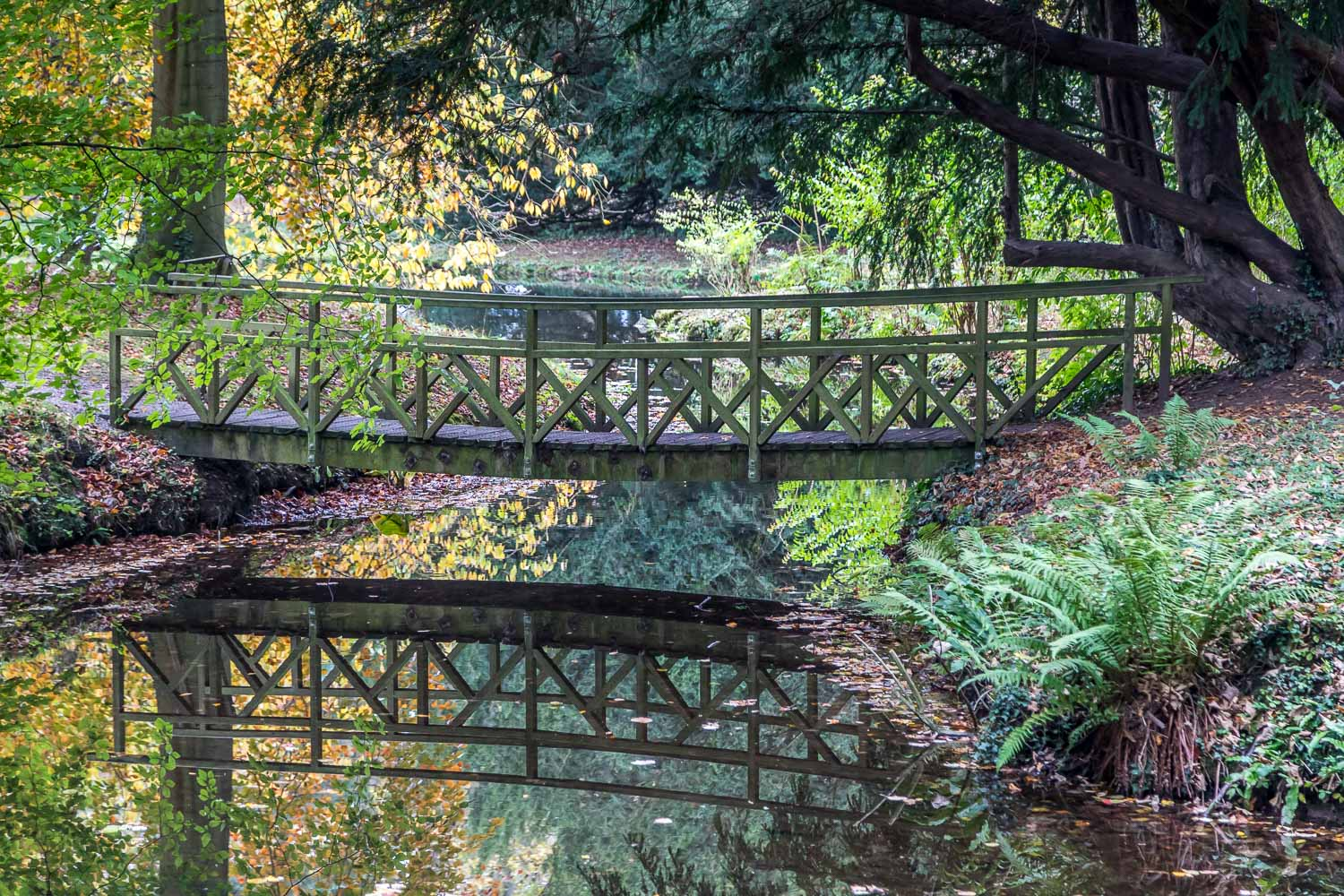 Thorp Perrow walk