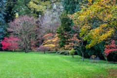 Thorp Perrow acers