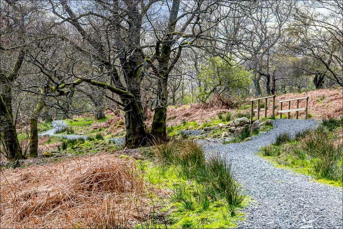 Ullswater Way1-55
