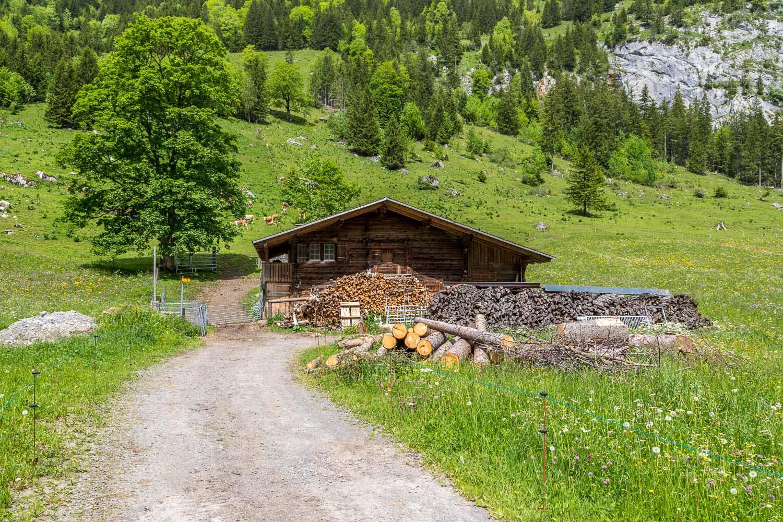 Uschene-Valley-63