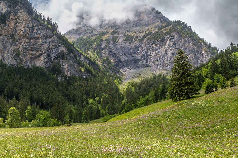 Uschene-Valley-64