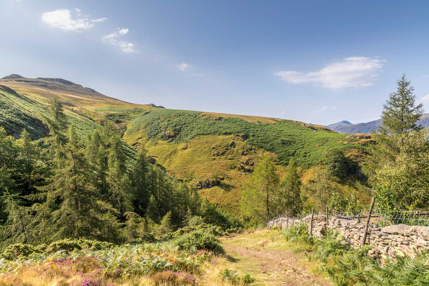 Bleaberry Fell, Falcon Crag