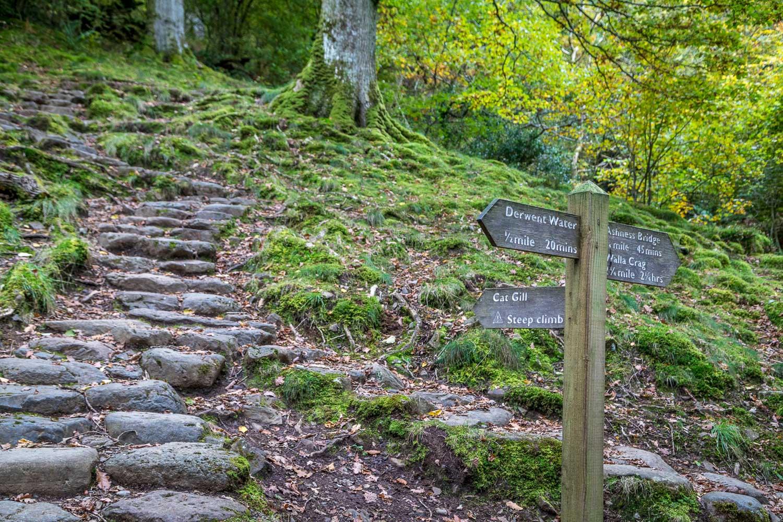 Walla Crag walk, Cat Gill