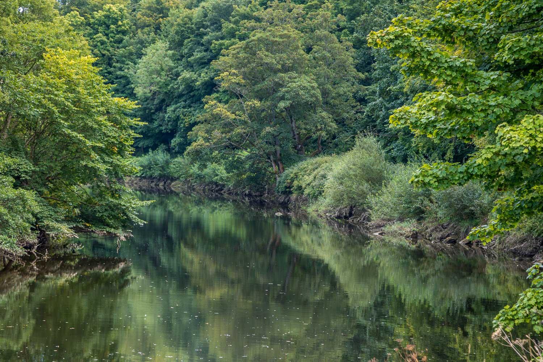 Warkworth walk, River Coquet