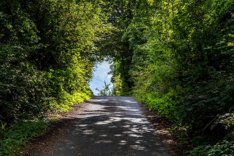 Warkworth walk