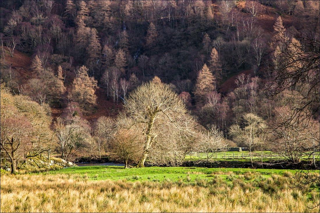 Borrowdale walk