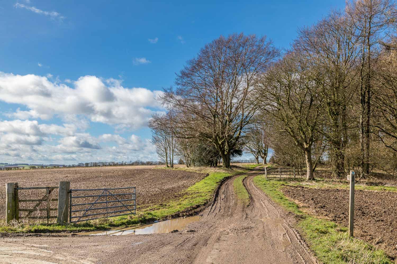 Wharram Percy walk, Wolds Way