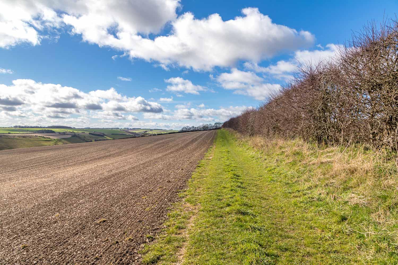 Raisthorpe Wold, Wharram Percy walk