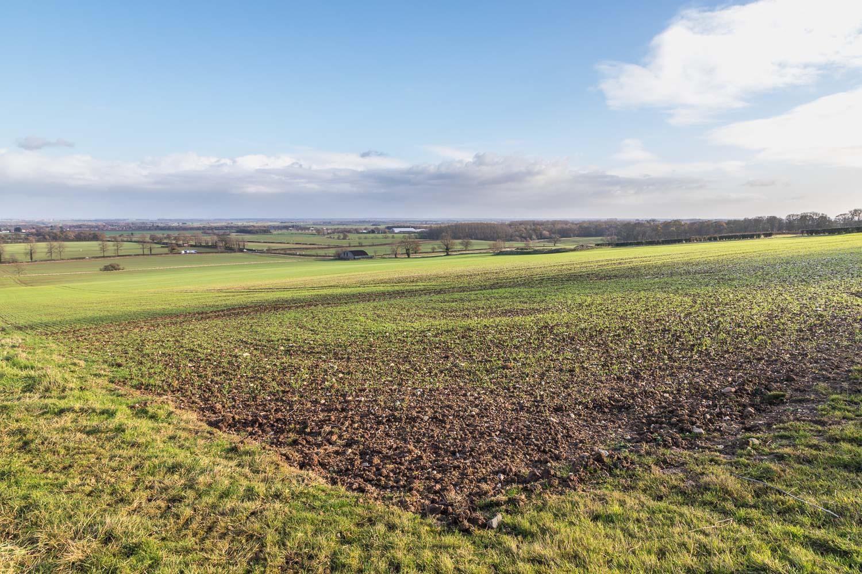 Wold Newton view