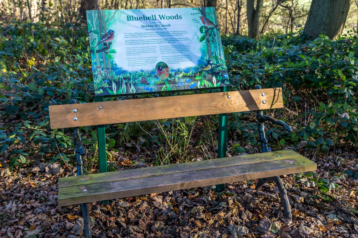 Wold Newton walk, Beesby Wood