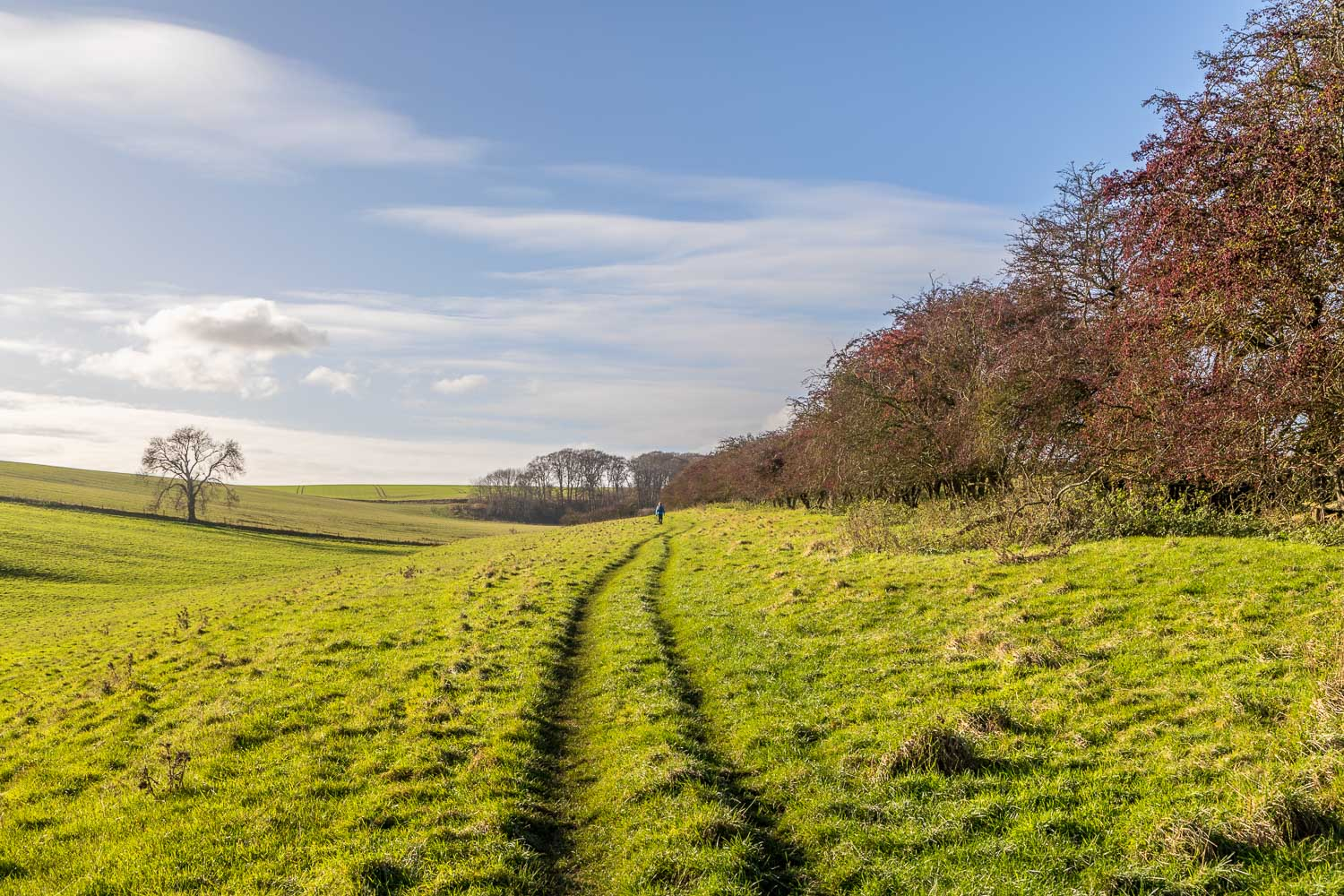 Wold Newton, The Valley, Wanderlust Way