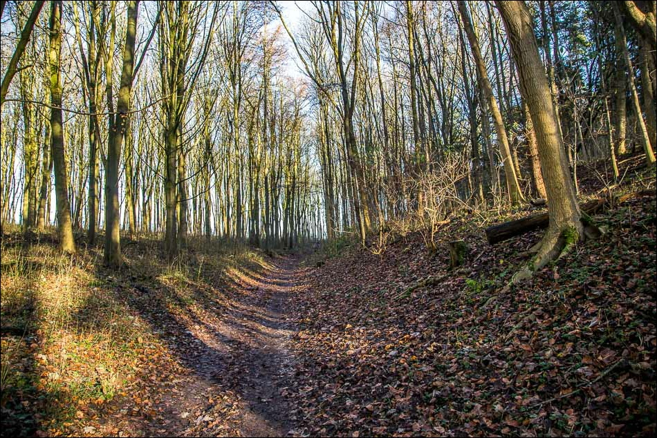 Wolds Way1-30