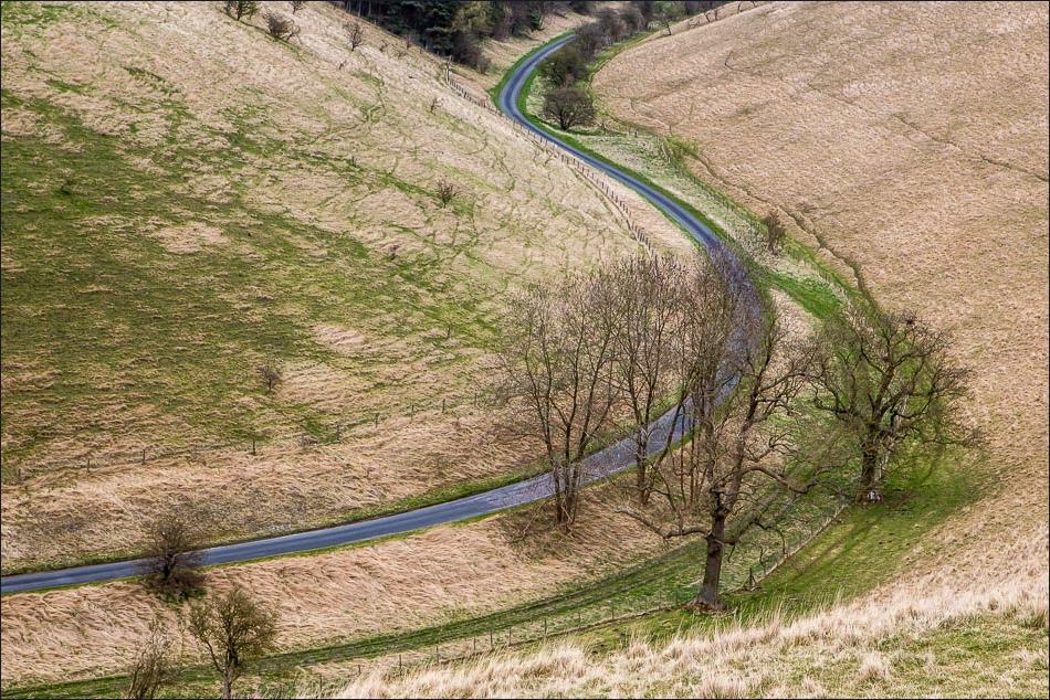 Pocklington Lane