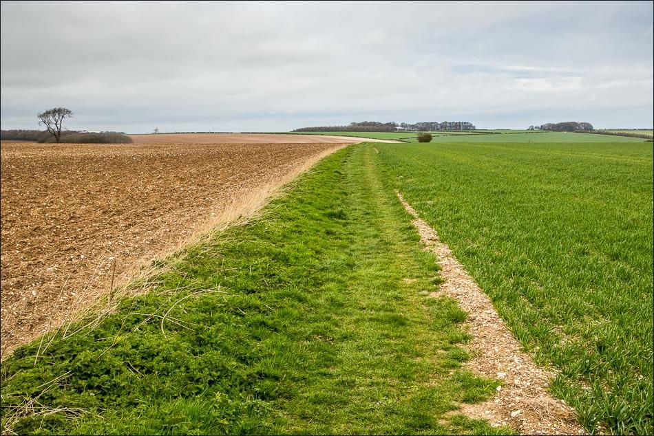 Wolds Way walk