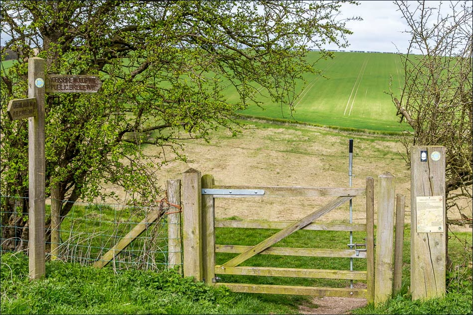 Horse Dale and Holm Dale, Wolds Way