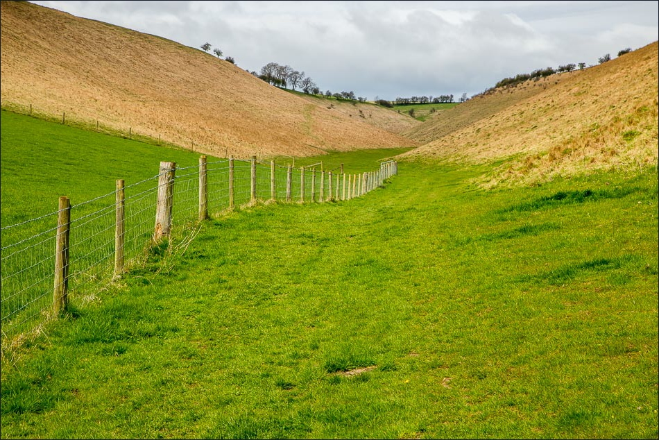Holm Dale, Wolds Way