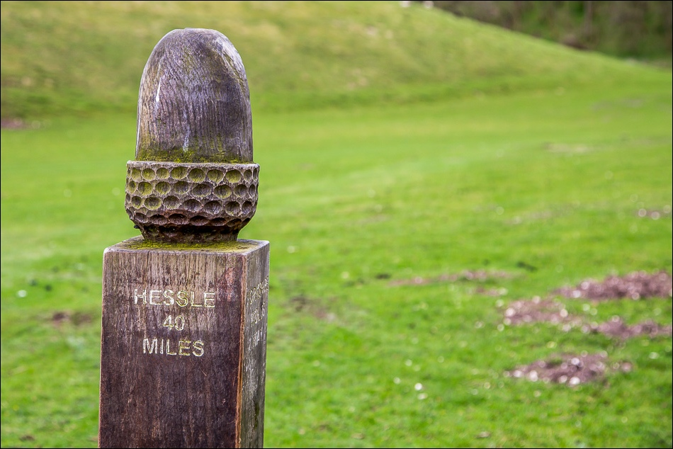 Wolds Way acorn post