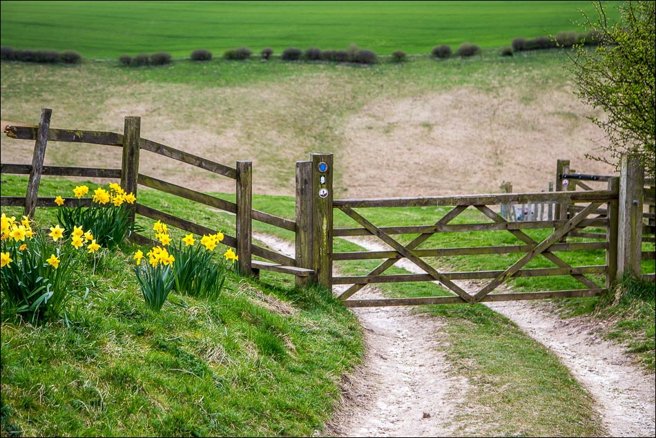 Wolds Way4-40