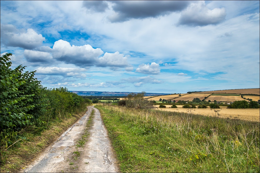 Wolds Way5-52