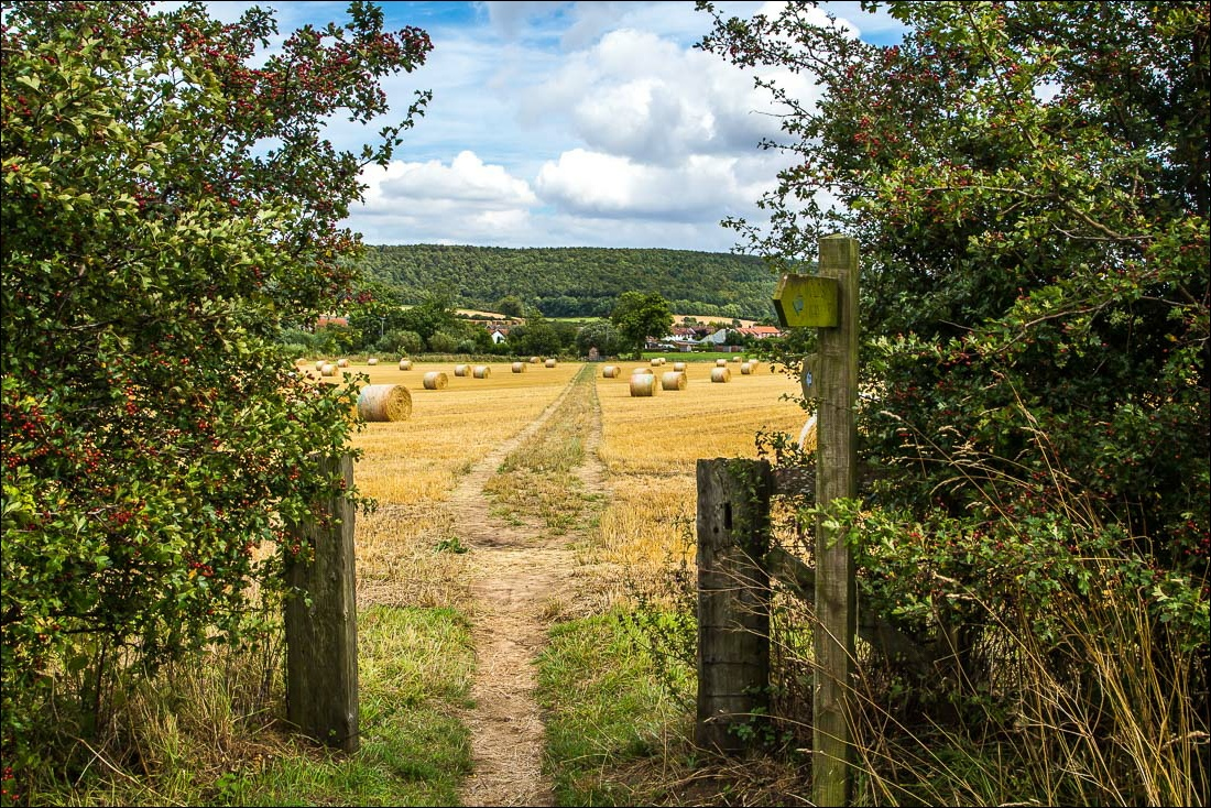 Wolds Way5-56