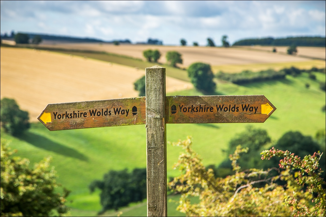 Wolds Way5-8