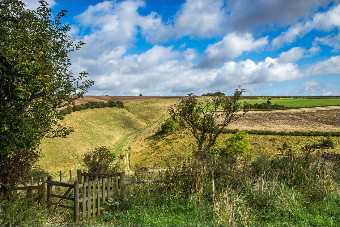 Wolds Way5-9