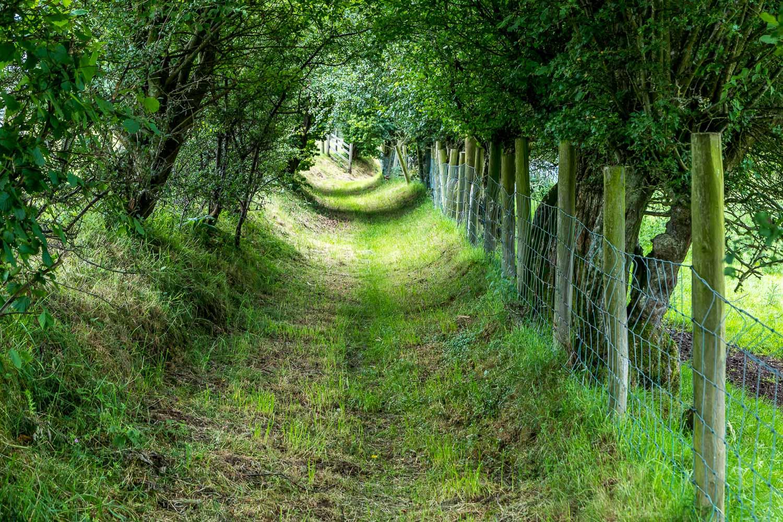Wythop walk Lake District, Seacross Lonning