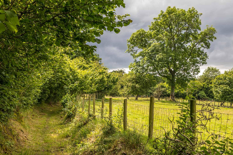 Wythop walk Lake District