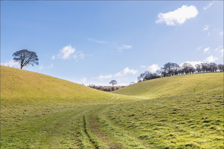 Brantingham walk, Swin Dale