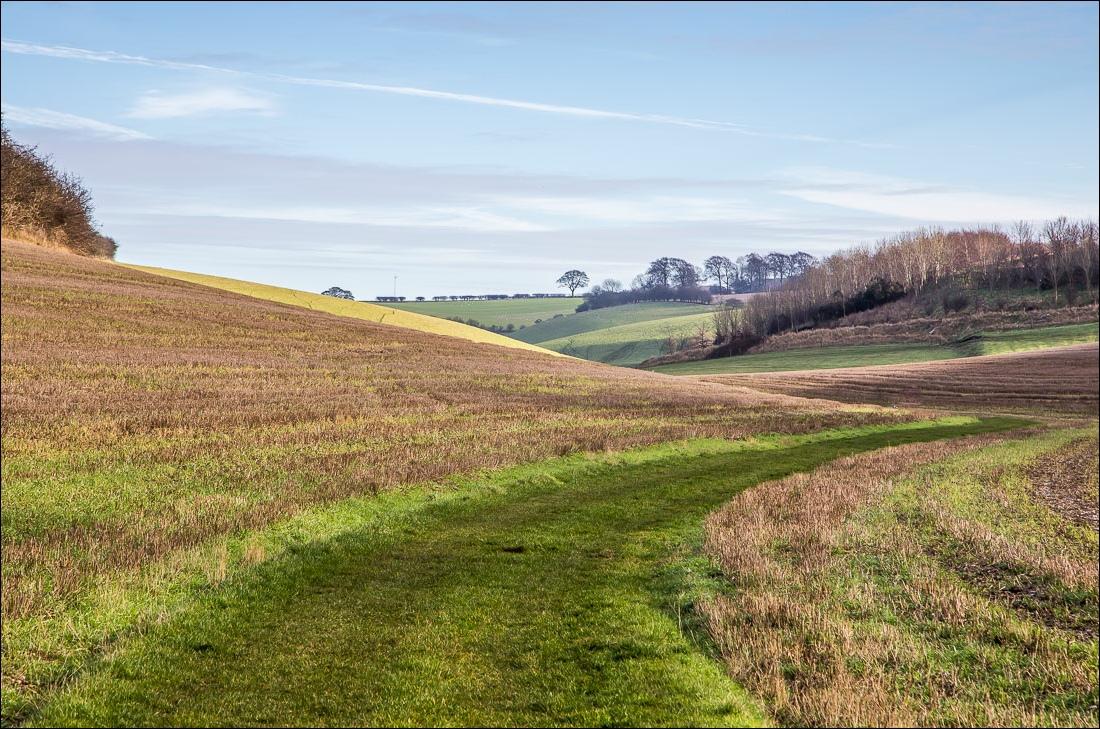 Swin Dale, North Newbald walk