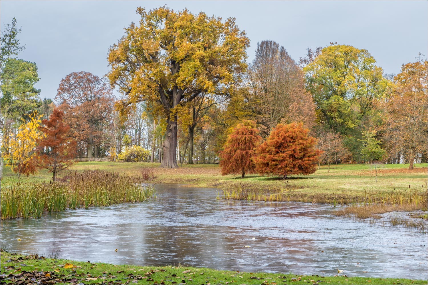 Thorp Perrow